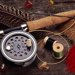 Охотничьи и рыболовные магазины Сеченово